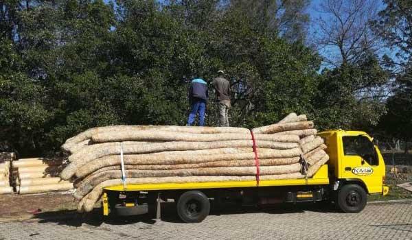 Unloading Fibre Rolls