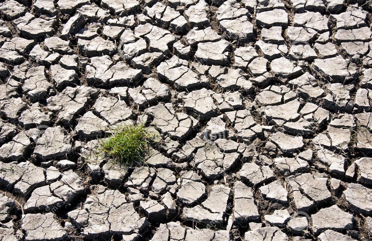 Sub-Saharan Virtual Platform for Climate Change and Disaster Management