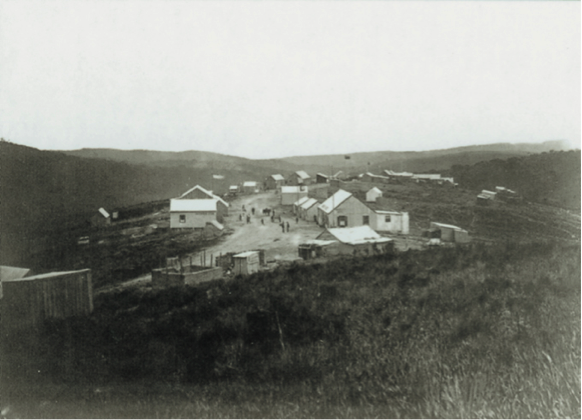 The developing town of Millwood (circa 1870s). This photo shows that the area around the town was covered with fynbos and not forest.