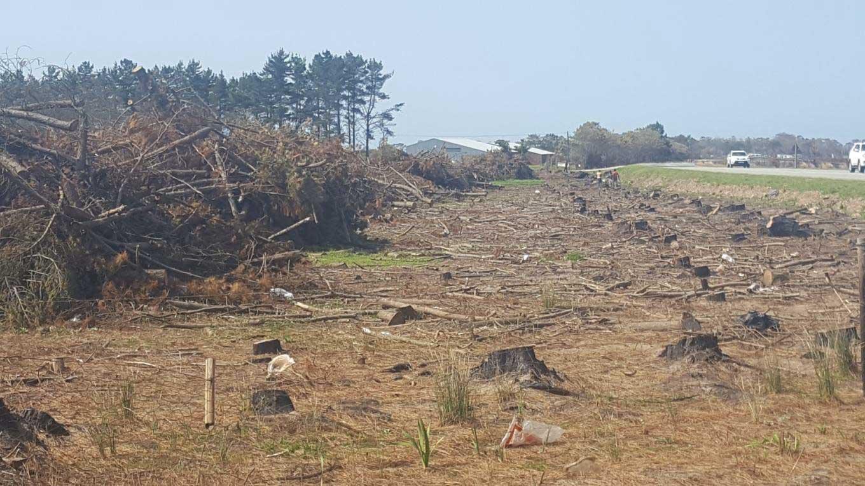 Landowners Clearing Land