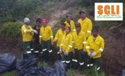 SANParks workers clearing Madeira vine from the Touw River mouth area.