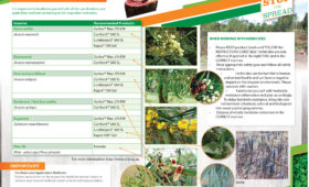 SUMMARY: Herbicide applications for some invasive alien plants