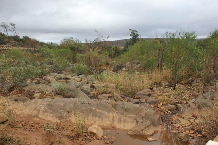 Drought rings in drastic measures in the Klein Karoo