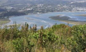 Southern Cape rivers have invaluable conservation importance